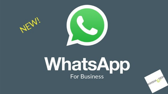 Whatsapp for business: come funziona il nuovo servizio per le imprese